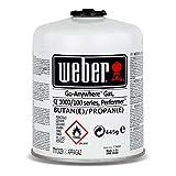 Weber Grill Set Dreiseitige Grillbürste 30 cm – Weber Gas Kartusche für Q 100 Serie - 2